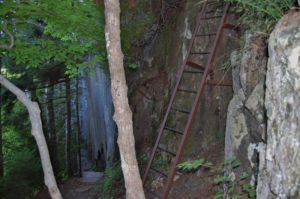 acadia trail with ladder