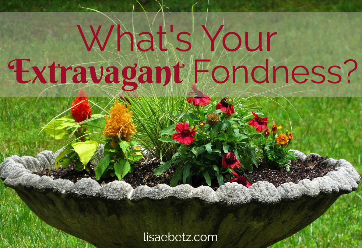 What's Your Extravagant Fondness?